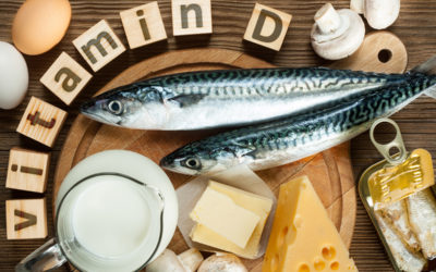 A selection of food high in vitamin D including cheese, milk and eggs